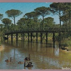Postales: ITALIA. CERVIA. *PARCO NATURALE* CIRCULADA 1976.. Lote 221931885