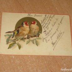 Postales: POSTAL DE PAREJA DE PAJAROS. Lote 222887740