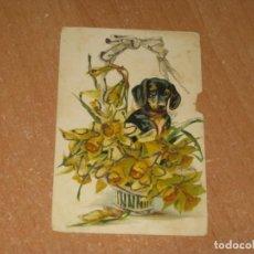 Postales: POSTAL DE PERRO. Lote 222887827