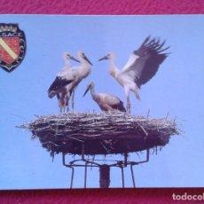 Postales: POST CARD CARTE POSTALE ALSACE ALSACIA PITTORESQUE FRANCIA FRANCE CIGÜEÑAS CIGOGNEAUX CIGOGNE STORK.. Lote 228168080