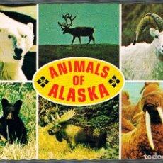 Postales: ANIMALES DE ALASKA. Lote 228484180