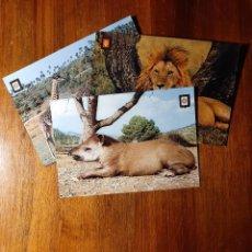 Postales: LOTE 3 POSTALES, TEMÁTICA ANIMALES SALVAJES, LEON, GIRAFAS, TAPIR. Lote 233952430