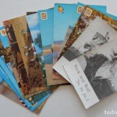 Postales: 15 POSTALES ANIMALES CÓMICOS - BURRO / ¡GUAPA! - ROCK AND ROLL? - EL EJERCICIO ABRE EL APETITO - .... Lote 235512625