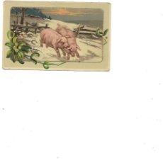 Postales: ANTIGUA POSTAL DE DOS CERDOS EN RELIEVE CIRCULADA 1915. Lote 236227570