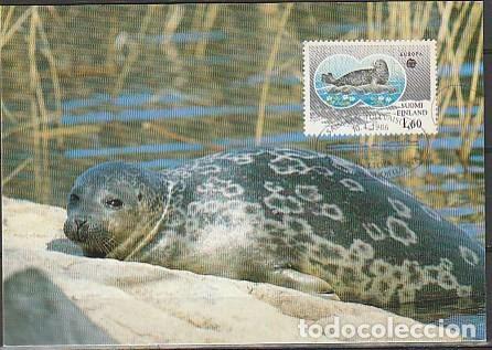 FILANDIA & MAXI, EUROPA CEPT, FOCA 1986 (986) (Postales - Postales Temáticas - Animales)