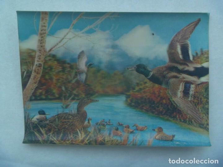 POSTAL DE ESCENA CON PATOS . TIPO VISIORAMA , 3D , AÑOS 60 (Postales - Postales Temáticas - Animales)