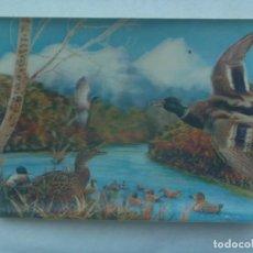 Postales: POSTAL DE ESCENA CON PATOS . TIPO VISIORAMA , 3D , AÑOS 60. Lote 242201985