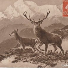 Postales: FRANCIA PAREJA DE CIERVOS 1913 POSTAL CIRCULADA. Lote 242982610