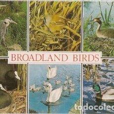 Postales: GRAN BRETANA & CIRCULADO, AVES DE BROADLAND, NORWICH A SKIPTON 2006 (6876). Lote 243070935