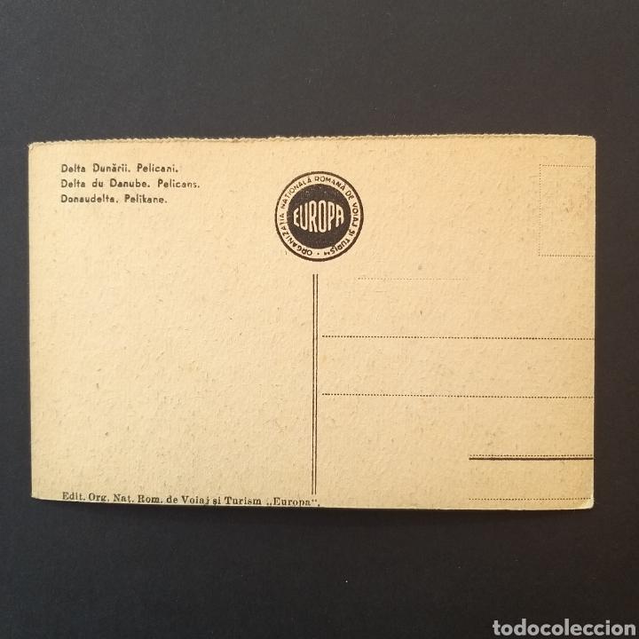 Postales: Postal antigua Rumanía Danubio RM001 - Foto 2 - 243801520