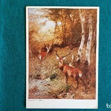 Postales: POSTAL PAISAJE CON CIERVOS - JOHANN CHR. KRÖNER. Lote 243896120