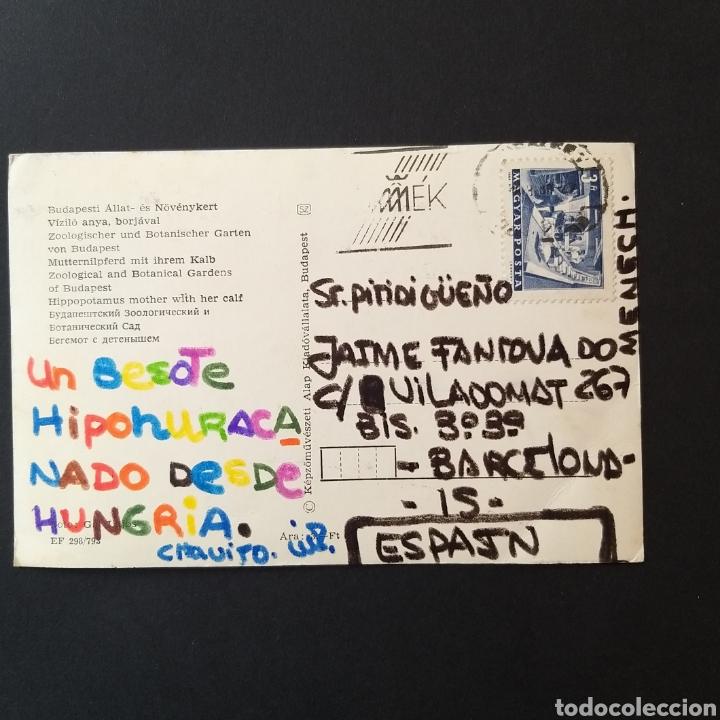 Postales: Postal antigua Hungría Budapest Zoo HU001 - Foto 2 - 243965605