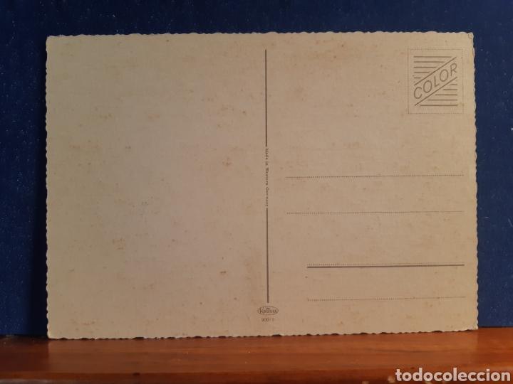 Postales: Antigua postal de gatos años 60 - Foto 2 - 244579905