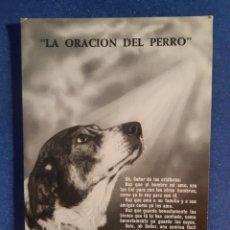 Postales: ANTIGUA POSTAL DE LA ORACIÓN DEL PERRO AÑOS 60. Lote 244583825