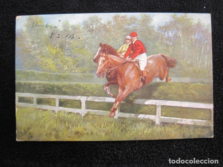 Postales: CABALLOS-COLECCION DE 5 POSTALES ANTIGUAS-VER FOTOS-(77.800) - Foto 5 - 244588900
