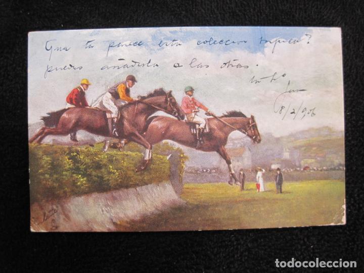 Postales: CABALLOS-COLECCION DE 5 POSTALES ANTIGUAS-VER FOTOS-(77.800) - Foto 7 - 244588900