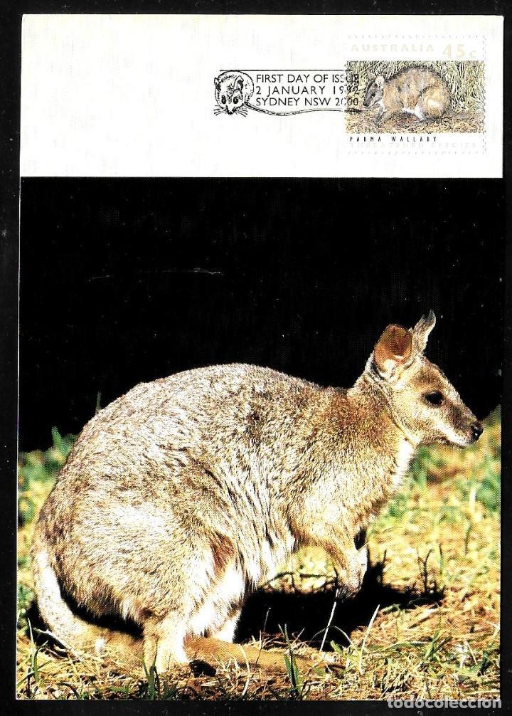 AUSTRALIA (Postales - Postales Temáticas - Animales)