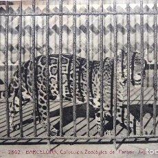 Postales: P-12476. BARCELONA. COLECCIÓN ZOOLÓGICA DEL PARQUE. JAGUAR. POSTAL A.T.V. NO CIRCULADA. PPIOS S. XX. Lote 252842660
