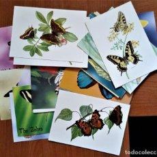 Postales: TARJETAS POSTALES MARIPOSAS 24 DIFERENTES. Lote 253174720