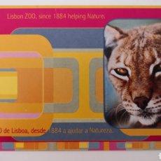 Postales: POSTAL ZOO LISBOA LISBON PORTUGAL - LINCE. Lote 253275400