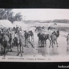 Postales: GRUPO DE CAMELLOS-TIPO ARABE-TIPO ORIENTE-EDICION LL-POSTAL ANTIGUA-(79.771). Lote 255005490