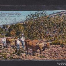 Postales: POSTAL DE ESPAÑA - GRAN CANARIA. LAS PALMAS. ARÁNDO CON BUEYES (PLOUGHING WITH OXEN) ISLAS CANARIAS. Lote 270138993