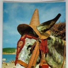 Postales: POSTAL DE BURRO, BURRITO, ASNO. MONTURA A LA ANDALUZA. ESCRITA. 1972. Lote 274833373
