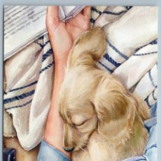 Postales: READ THE BOOK WITH DOG RETRIEVER LABRADOR FRIENDS RUSSIAN NEW POSTCARD - SASHA DEINA. Lote 278752988