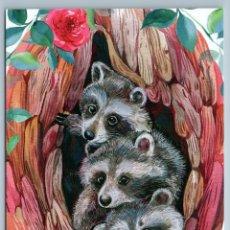 Postales: THREE FUNNY RACCOONS IN HOLLOW TREE WILD ANIMAL BY MITRUSHOVA RUSSIAN POSTCARD - TATYANA MITRUSHOVA. Lote 278753403