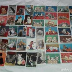 Postales: BELLO LOTE DE 50 ANTIGUAS POSTALES TEMÁTICA ANIMALES GATOS AÑOS 50 CASI TODAS SIN CIRCULAR. Lote 286278483