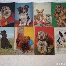 Postales: LOTE CON 8 POSTALES DE PERRITOS, VINTAGE. Lote 293199428