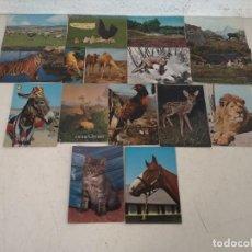 Postales: LOTE CON 15 POSTALES DE ANIMALES, VINTAGE. Lote 293199663