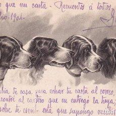 Postales: BONITA POSTAL ILUSTRADA CON PERROS. REVERSO SIN DIVIDIR. CIRCULADA. Lote 293639153
