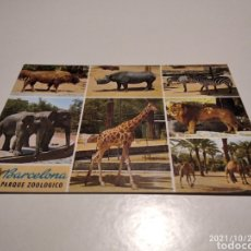 Postales: POSTAL BARCELONA PARQUE ZOOLÓGICO. Lote 295753178
