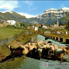 Postales: TORLA (HUESCA) - VISTA GENERAL - ED. SICILIA 1966. Lote 10112131
