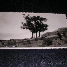 Postales: GRAUS,POSTAL FOTOGRAFICA,EN LAPIZ PARTE POSTERIOR VIAJE A GRAUS,14X9 CM.. Lote 17610318