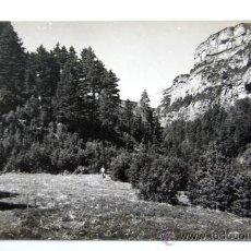 Cartes Postales: AÑISCLO / LA RIPARETA Y MONTE PERDIDO / AÑOS 60 / ED.SICILIA N.12 / HUESCA /. Lote 17880199