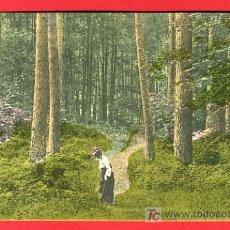 Postales: TAMARITE DE LITERA, HUESCA, VISTA PARCIAL, P37053. Lote 18591607