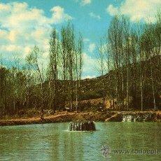 Postales: PISCIFACTORIA LA ESCALERUELA (LAGO DE PESCA) SARRIÓN (TERUEL) SIN CIRCULAR . Lote 27285560