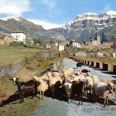 Postales: TORLA (HUESCA) - VISTA GENERAL Y MONDARRUEGO - ED. SICILIA 1966. Lote 28223329
