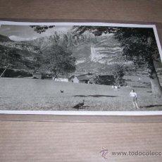 Postales: TORLA ORDESA ALTO PIRINEO ARAGON EL MANDARRUEGO DESDE LA FINCA VIU -ZERKOWITZ 14X9 CM. . Lote 32044695