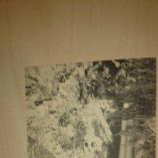 Postales: POSTAL SIN CIRCULAR - MONASTERIO DE PIEDRA ZARAGOZA - CASCADA CAPRICHOSA - HAUSER Y MENET . Lote 47760933