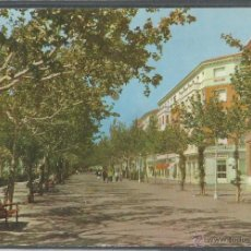 Cartes Postales: CALATAYUD - PASEO DE CALVO SOTELO - P14960. Lote 54813515