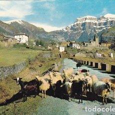 Postales: TORLA (HUESCA) 14- VISTA GENERAL. ED: SICILIA (588). Lote 116293955