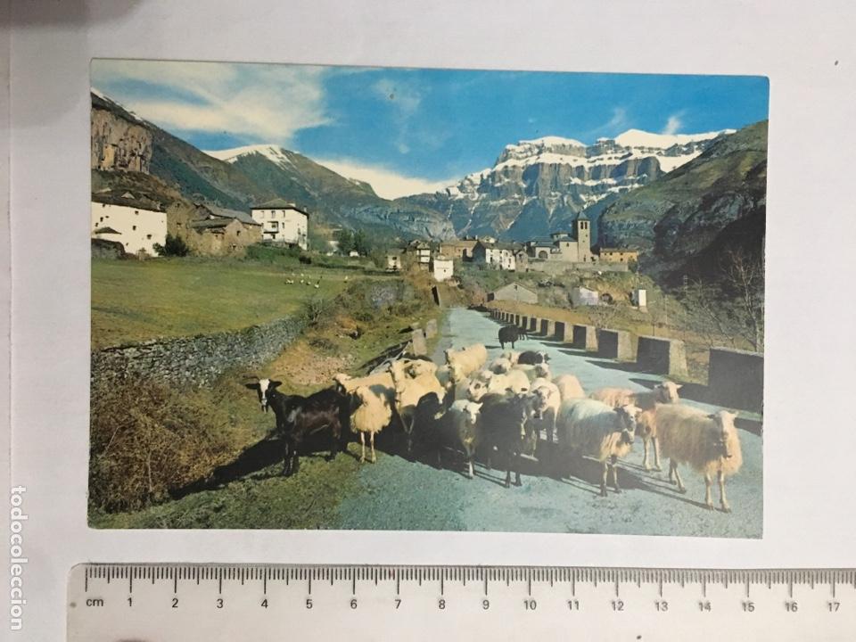 POSTAL. TORLA. HUESCA. VISTA GENERAL. ED. SICILIA. H. 1970? (Postales - España - Aragón Moderna (desde 1.940))
