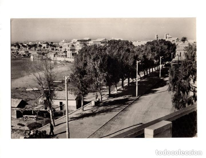 TORREVIEJA (ALICANTE).- AVENIDA DEL 18 DE JULIO (Postales - España - Aragón Antigua (hasta 1939))
