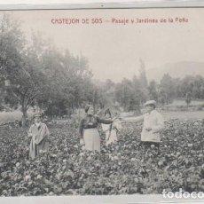 Postales: CASTEJON DE SOS. PASAJE Y JARDINES DE LA PEÑA. EDICIÓN E. BIELSA. CLICHE M. ARRIBAS. HUESCA . Lote 170504872