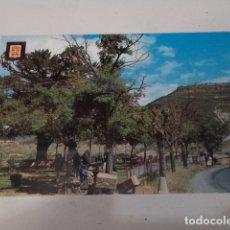 Postales: HUESCA - POSTAL JACA - ÁRBOL DE LA SALUD - AL FONDO RAPITÁN. Lote 172850044