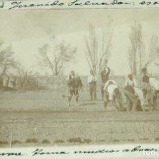 Postales: ZARAGOZA. BORJA. PLANTADO DE BARBADOS. ESQUEJES DE LAS CEPAS. FOTOGRÁFICA. CIRCULADA EN 1904.. Lote 182894240