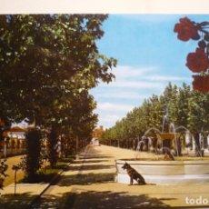 Postales: POSTAL LA CAROLINA PASEO F ARCHE. Lote 183330326